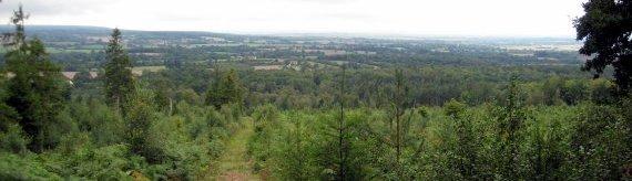 Forêt d'Écouves
